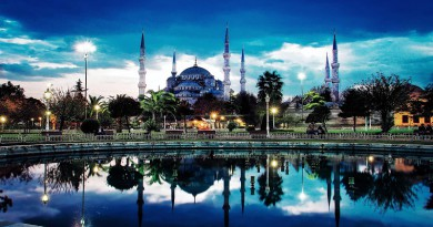 Комбинация в турецких шашках